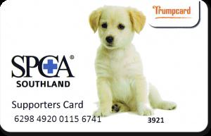 Trumpcard